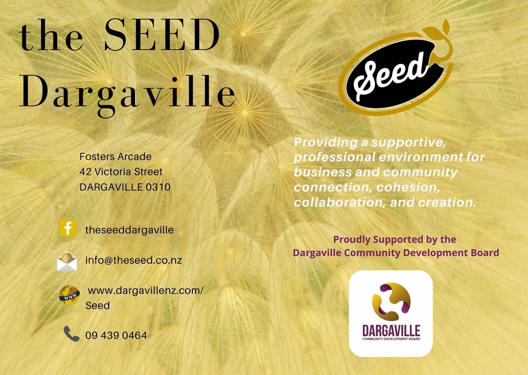 SEED contact us